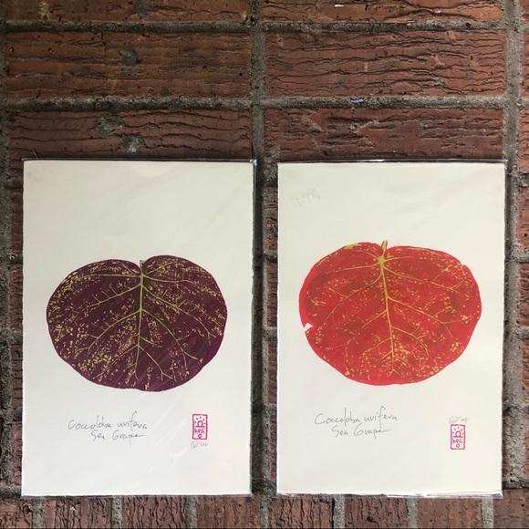 2 Contemporary Botanicals Hand Pulled Serigraphs